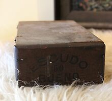 Antique Cigar Box by NicoleDiesel