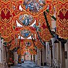 Bandalori, Balzan--Malta  by Edwin  Catania