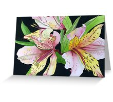 Pink and Yellow Lilies Greeting Card