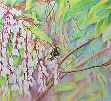 Buzz Bumble Bee by Jacqui Cleijne