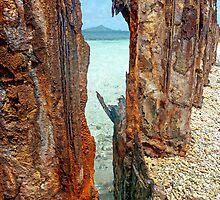 man versus nature by globeboater