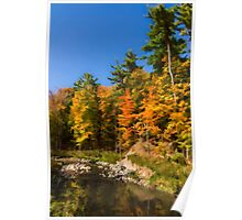 Impressions of Forests - Autumn on the Riverbank Poster