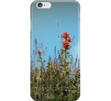 paintbrush wildflowers, Johnston's Ridge iPhone Case/Skin