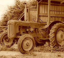 Fordson Dexter by yampy