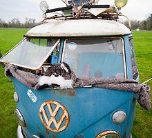 VW Hippy Split Screen Buss by BigshotD3