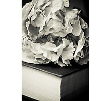 Peony in Black and White Photographic Print