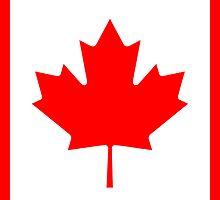 Canadian Flag - National Flag of Canada - Maple Leaf T-Shirt Sticker by deanworld