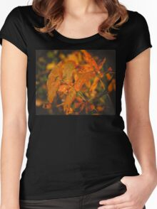 Autumn Tree Branches 2 Women's Fitted Scoop T-Shirt