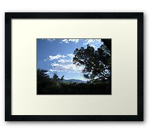 Dark Shade Framed Print