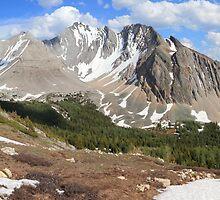 Above Highwood Pass II (panorama) by zumi