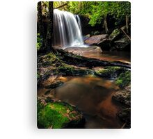 Untidy Forest Canvas Print