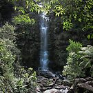 Great ocean road waterfall  by Louise Delahunty
