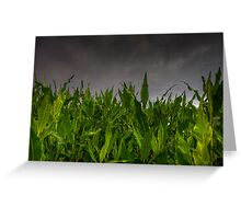Foliage vs Clouds Greeting Card