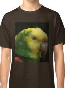 Colourful Classic T-Shirt
