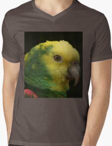 Colourful Mens V-Neck T-Shirt