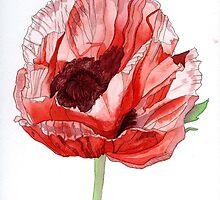 Single Red Poppy by Esmee van Breugel