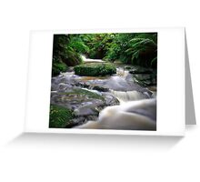 Leura Creek Allure Greeting Card