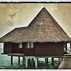 Maldivian Lagoon Villa by Ryan Davison Crisp
