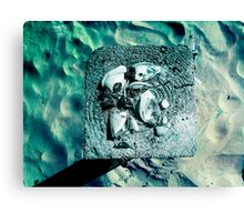 High above water Canvas Print