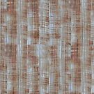 Corrugated iron by Morag Anderson