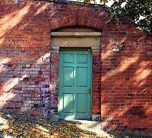 Turquoise Door by jimmyzoo