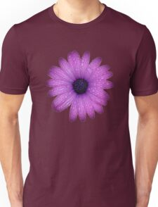 Purple African Daisy with Raindrops Isolated Unisex T-Shirt