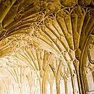Gloucester Cathedral, Cloisters. by Maybrick