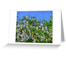 Summer Hedgerows Greeting Card