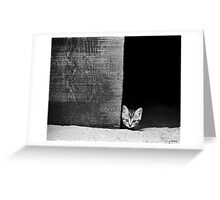 The Big Scary World Greeting Card
