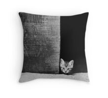 The Big Scary World Throw Pillow