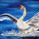 Swan by cathyjacobs