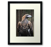 Magestic King Framed Print