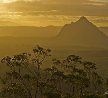 Beerwah, Glass House Mountains, Queensland by Julia Harwood
