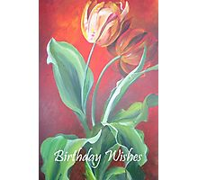 Birthday Wishes Red and Yellow Tulips Photographic Print