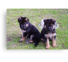 2 pups  Canvas Print