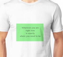 Wherever you are  right now  is exactly  where you need to be Unisex T-Shirt