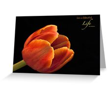 Live a Colourful Life Greeting Card