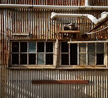 Old Facade - Old Geelong Tannery by Hans Kawitzki