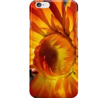 light and shade iPhone Case/Skin