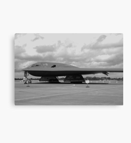 DEADLY FORCE AUTHORISED  Canvas Print