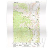 USGS Topo Map Washington State WA Loomis 242062 1982 24000 Poster