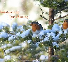 Christmas is for sharing by missmoneypenny
