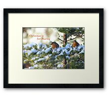Christmas is for sharing Framed Print