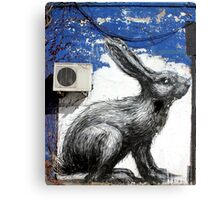 Run Rabbit, Run! Canvas Print