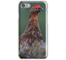 Red Grouse iPhone Case/Skin