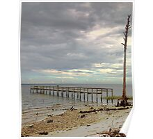 Along the Gulf Coast in the Panhandle of Florida Poster