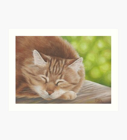 Cinnamon is Introspective Art Print
