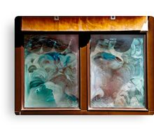 Look In Any Window Canvas Print