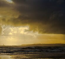Stormy outlook by Violaman