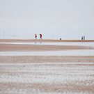 The Beach at Formby by Nick Coates